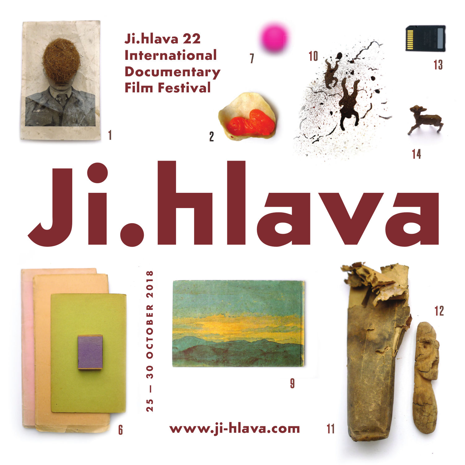 Jihlava International Documentary Film Festival